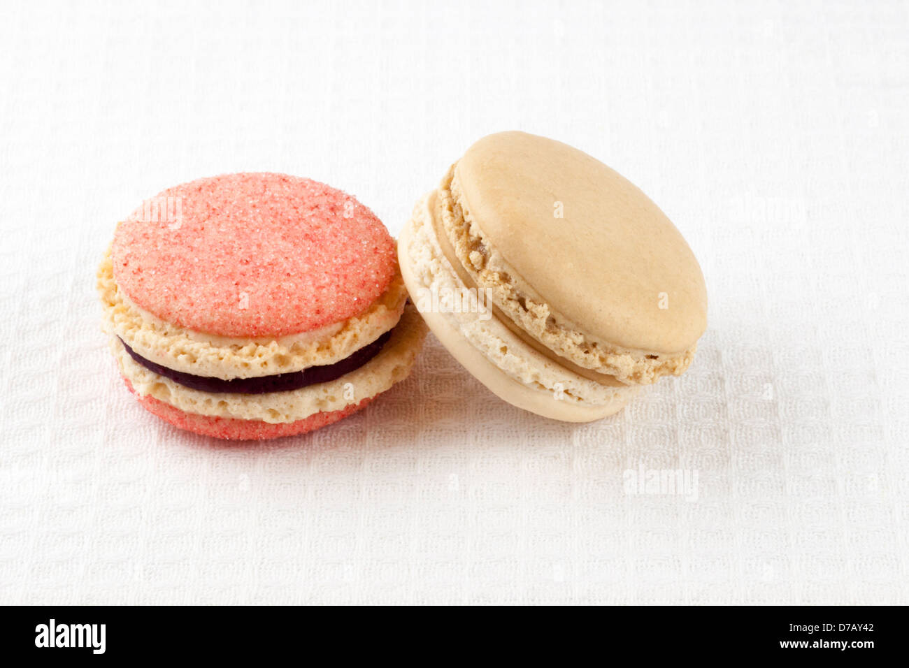 Blackcurrant-violet, and London Fog (vanilla and Earl Grey) macarons - Stock Image