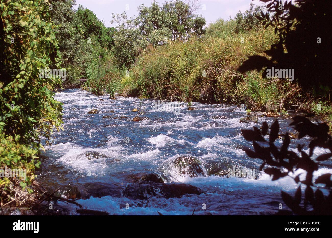 Dan nature reserve, galilee - Stock Image