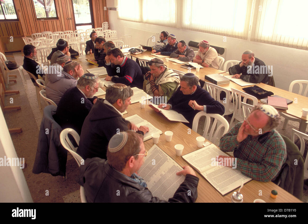 studying daily page from the talmud in the morning, in efrat, gush etzion - Stock Image