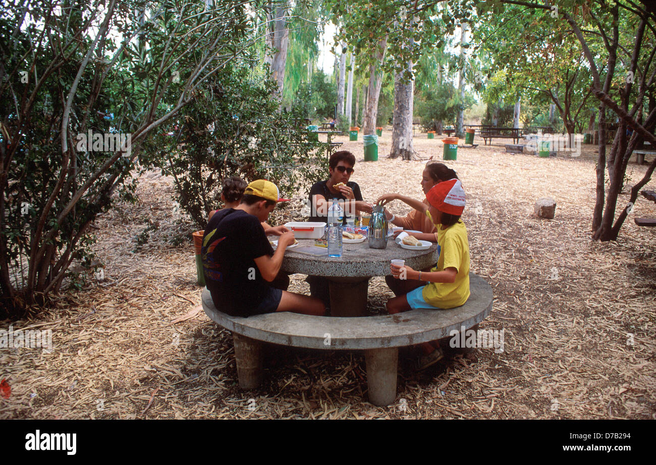 Family on a picnic in dan nature reserve - Stock Image