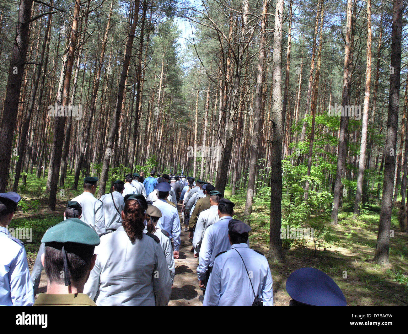 Israeli flags laid Lopochova Forest Poland In Memory Jews Murdered Known Tykocin Massacre - Stock Image