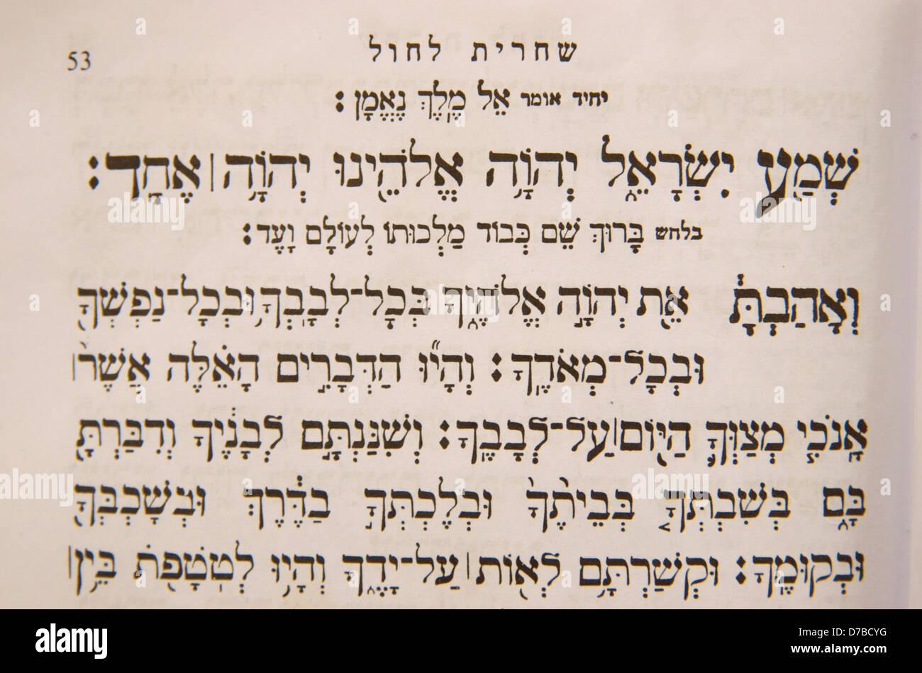 Shema israel chabad-4088
