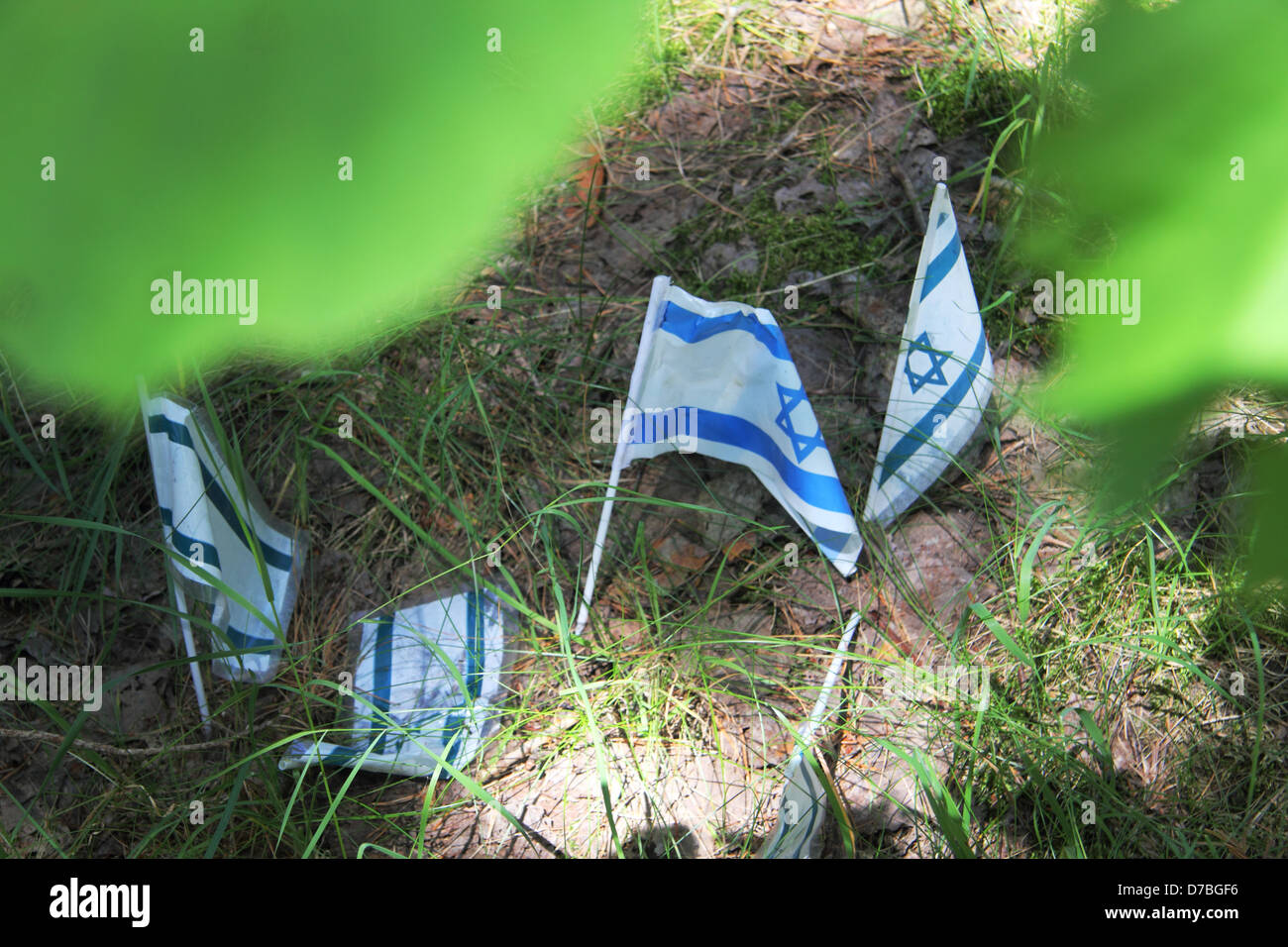 Israeli flags laid at Lopochova Forest, Poland, In Memory Of Jews Who Were Murdered - Stock Image