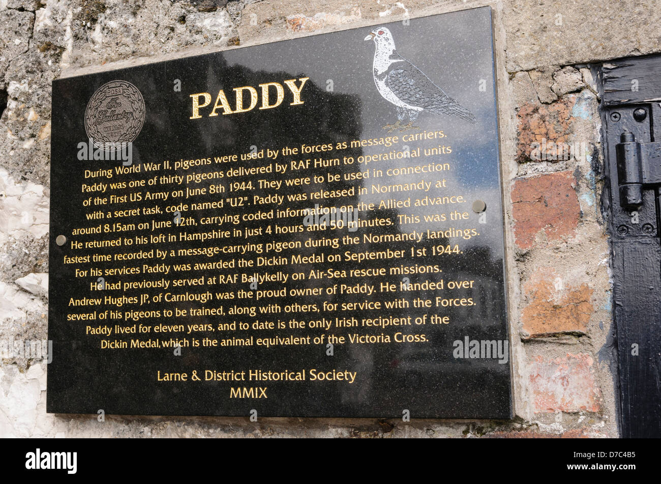 Plaque erected to highlight the 'bravery' of a pigeon named 'Paddy' during World War 2 - Stock Image