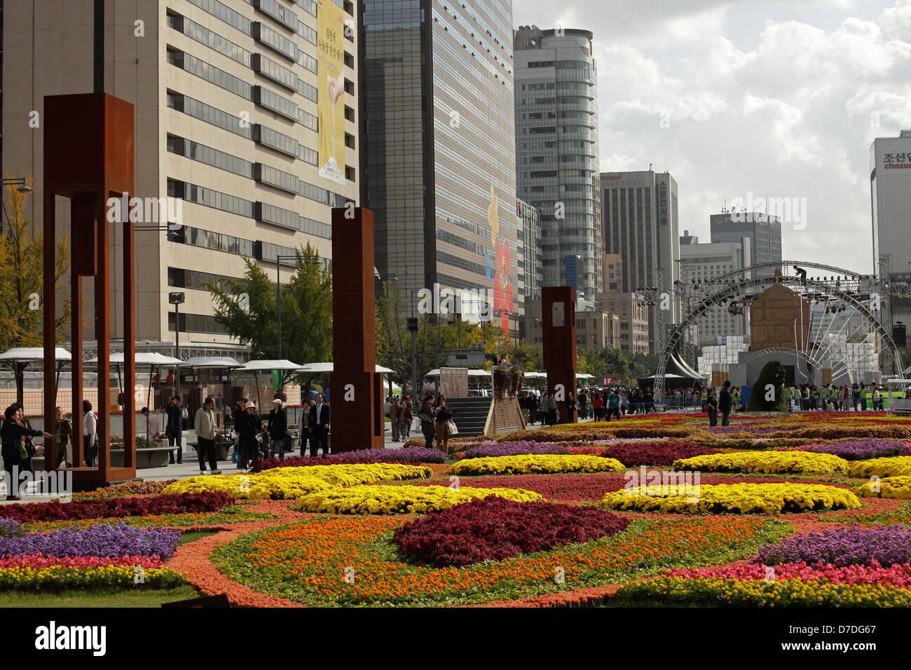 flower carpet on Sejongno street / Jongno-gu in downtown Seoul, South Korea, Asia Stock Photo