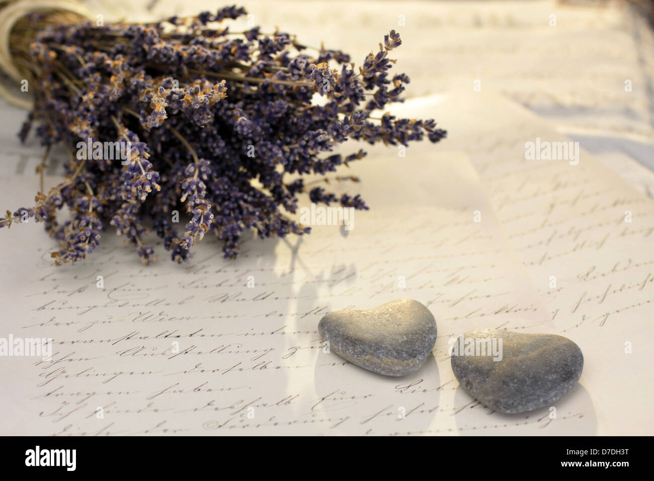 Stone hearts with old letter and lavender - Stock Image