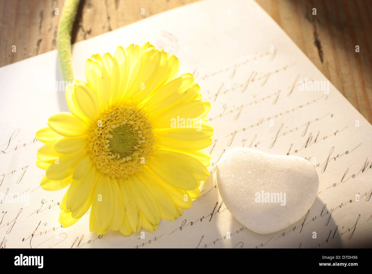 Stone heart with old letter and yellow flower - Stock Image
