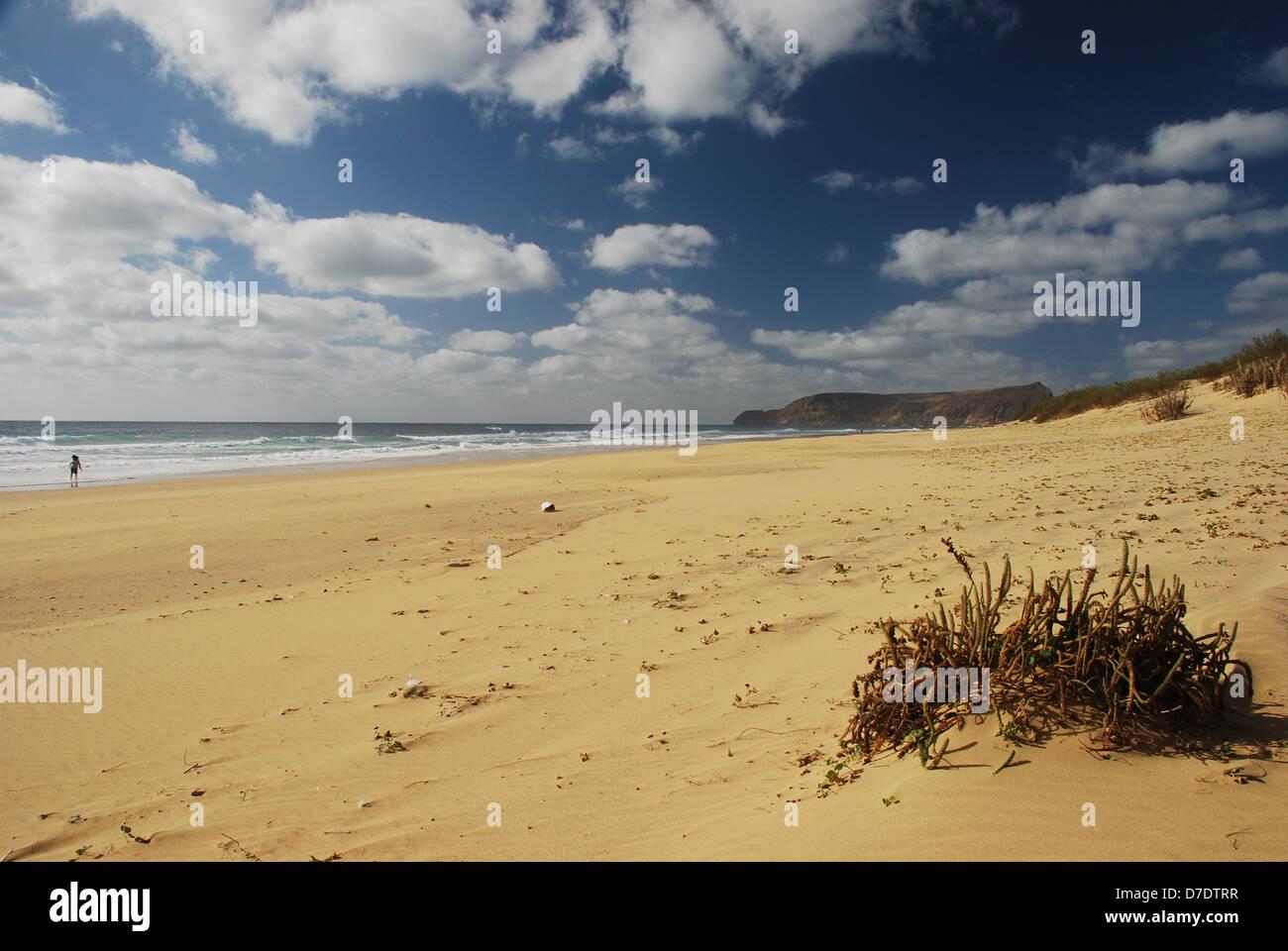 The main beach. Porto Santo. Portugal - Stock Image