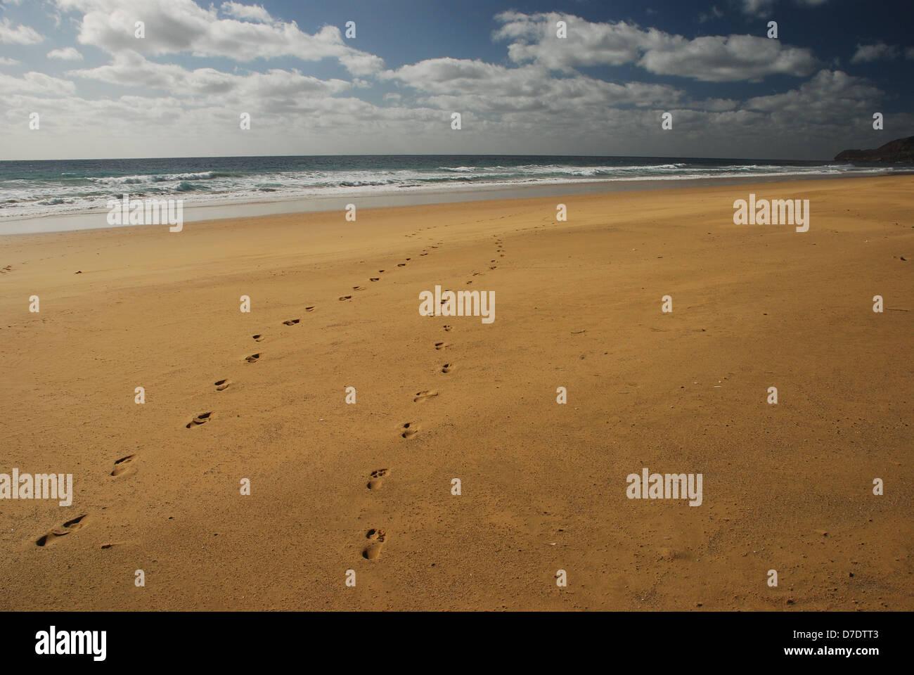 Footprints on the beach. Porto Santo. Portugal - Stock Image