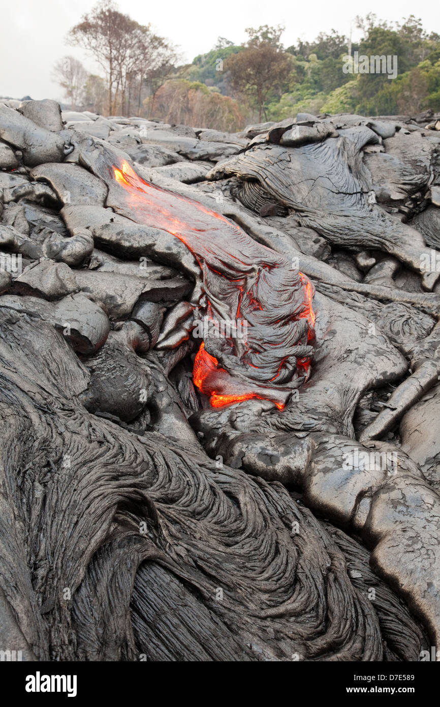 Lava flowing through the Royal Gardens subdivision on the Big Island of Hawaii. - Stock Image