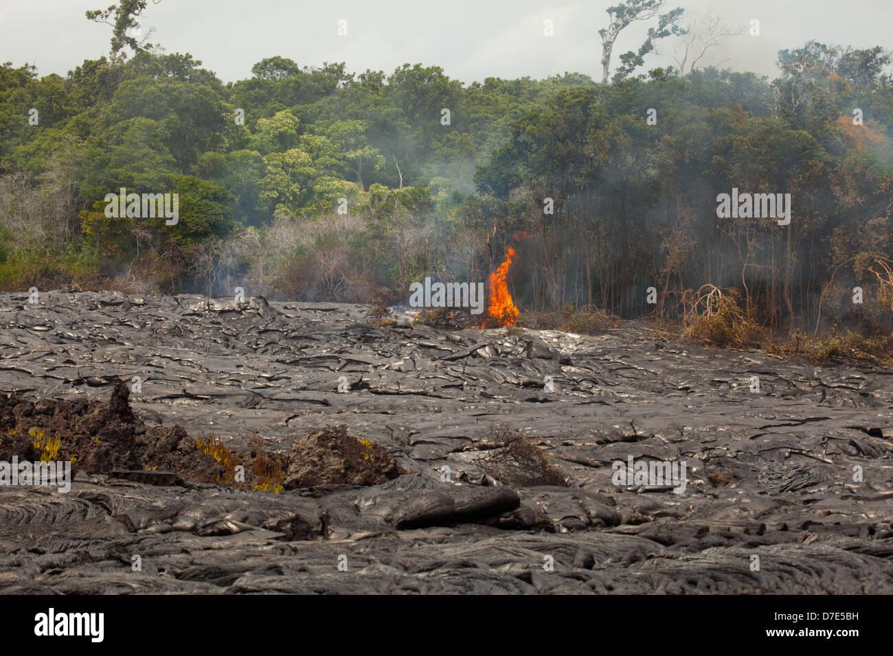 Lava flowing on the Big Island of Hawaii - Stock Image