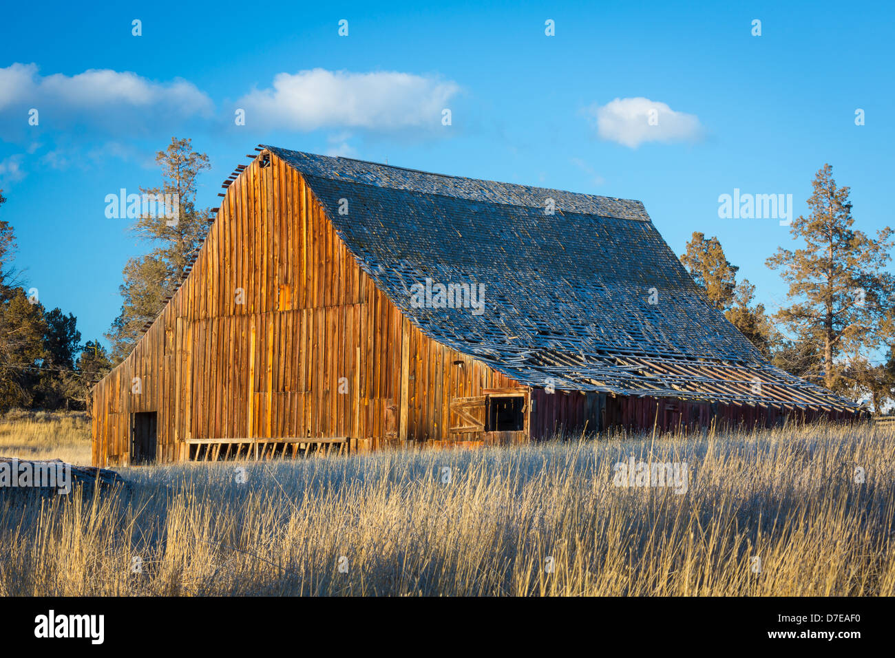 Dilapidated barn building in the Bend area of central Oregon - Stock Image