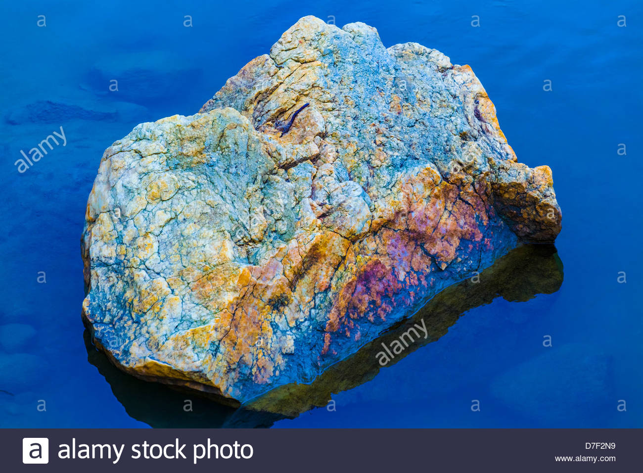 Photo of a Rock with natural dull colours made more vivid by computer. Located in Highland Creek in Toronto Ontario - Stock Image