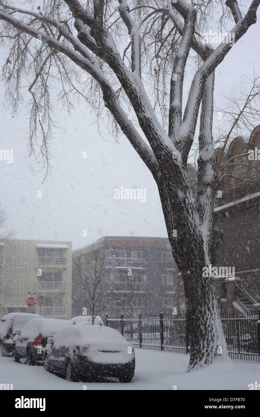 Snowstorm in Calgary, Alberta - Stock Image