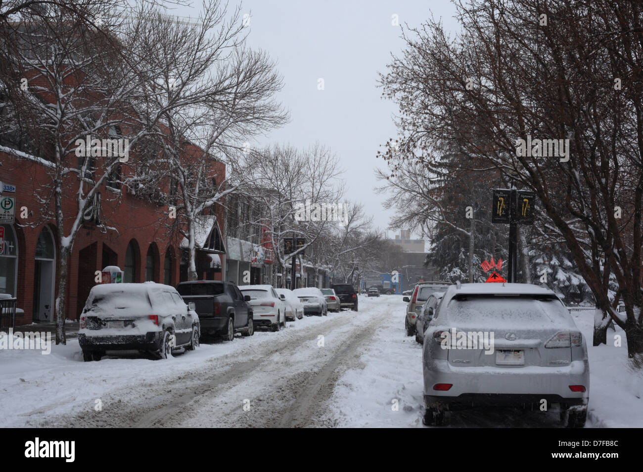 After the spring snowstorm in Calgary, Alberta - Stock Image