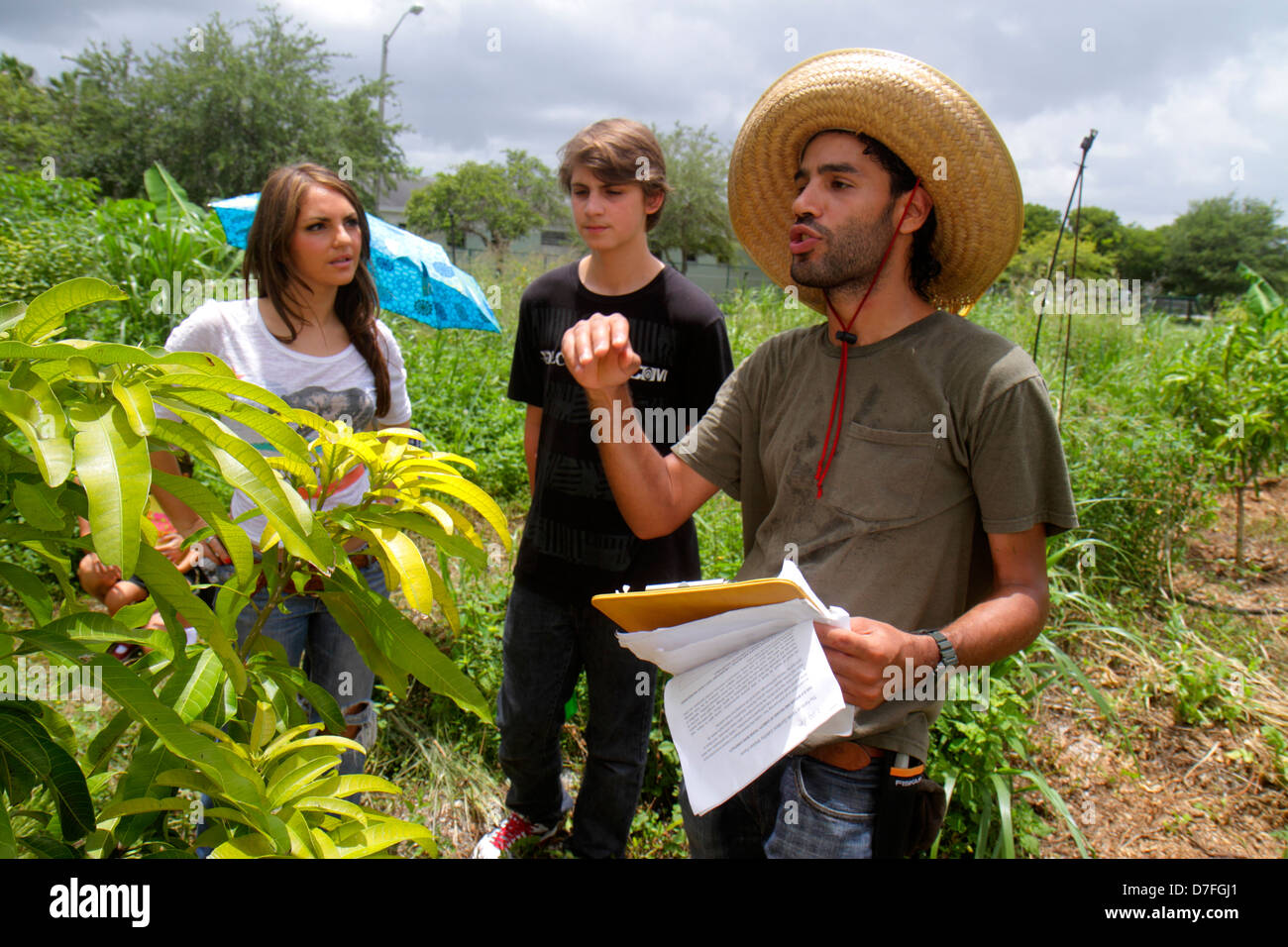 Miami Homestead Florida Harvest Farmers Market at Verde Gardens Hispanic man guide explaining organic growing farm - Stock Image