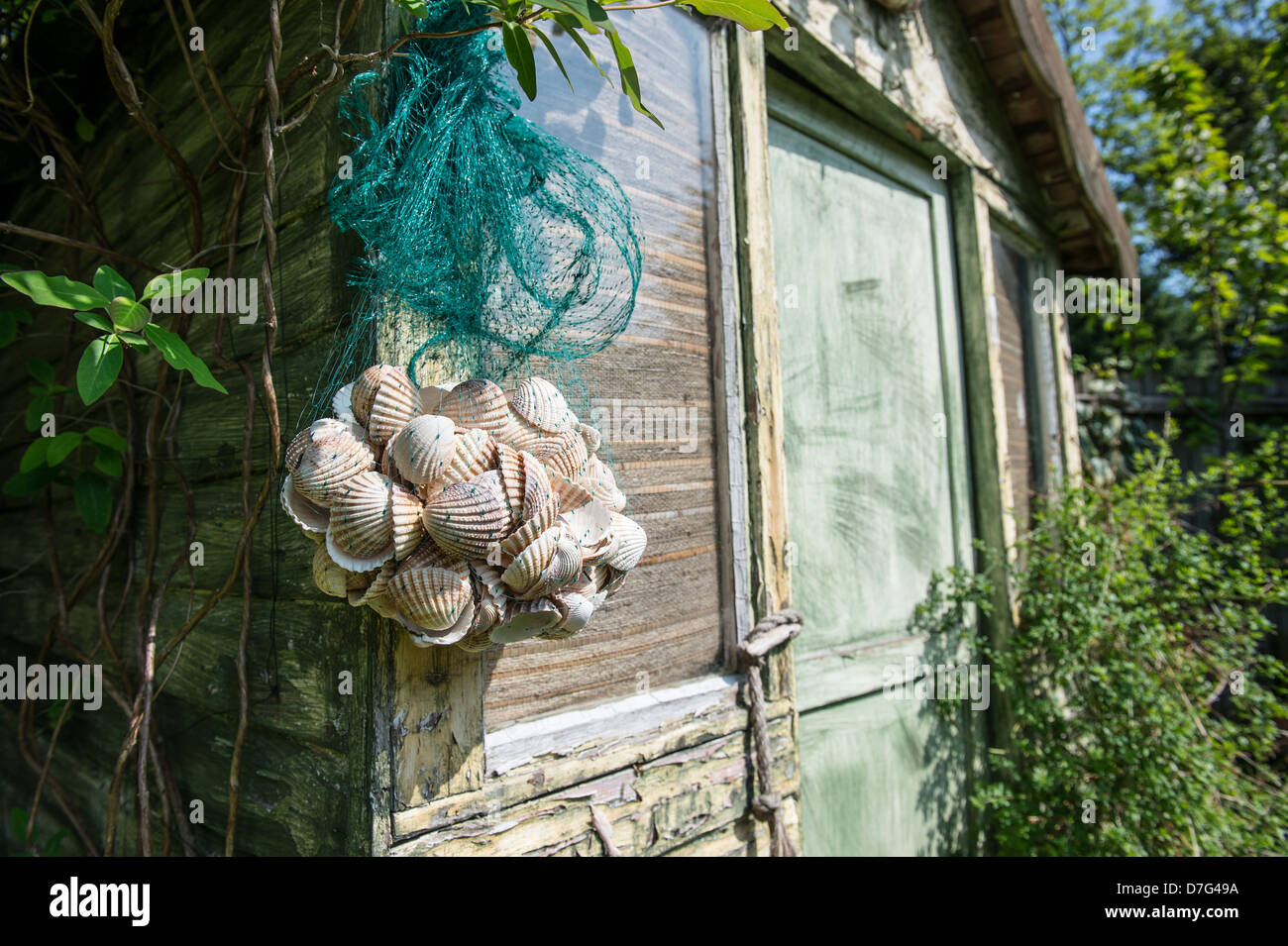 Beach hut in a city garden with lime washed panels and shell decorations - Stock Image