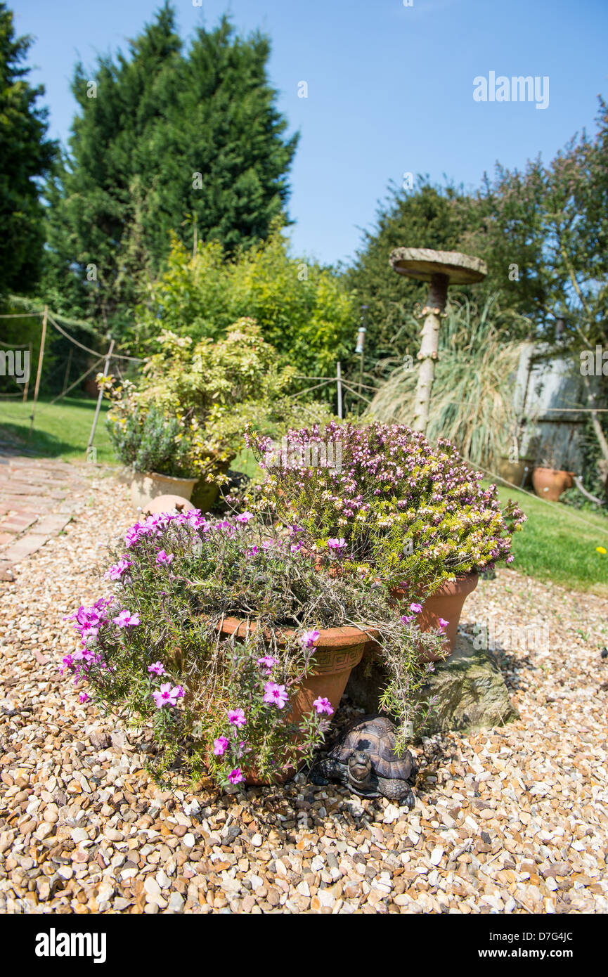 A garden view including a hidden tortoise and a bird table - Stock Image