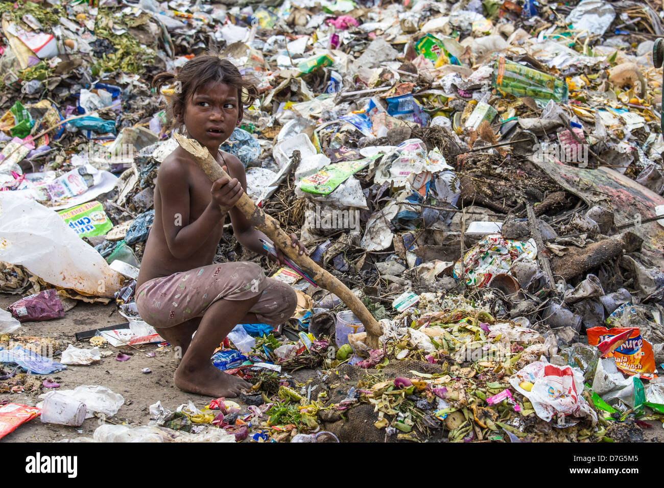Young Girl Scavenging For Scraps In The Garbage Delhi