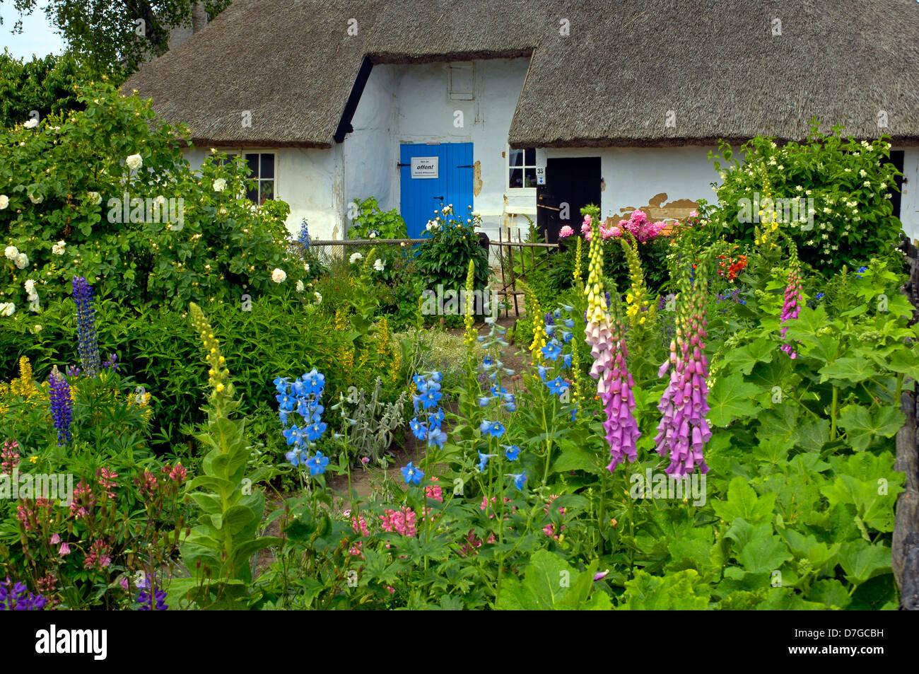 Germany, Mecklenburg-West Pomerania, island Rügen, Gross Zicker, parochial widow's house - Stock Image