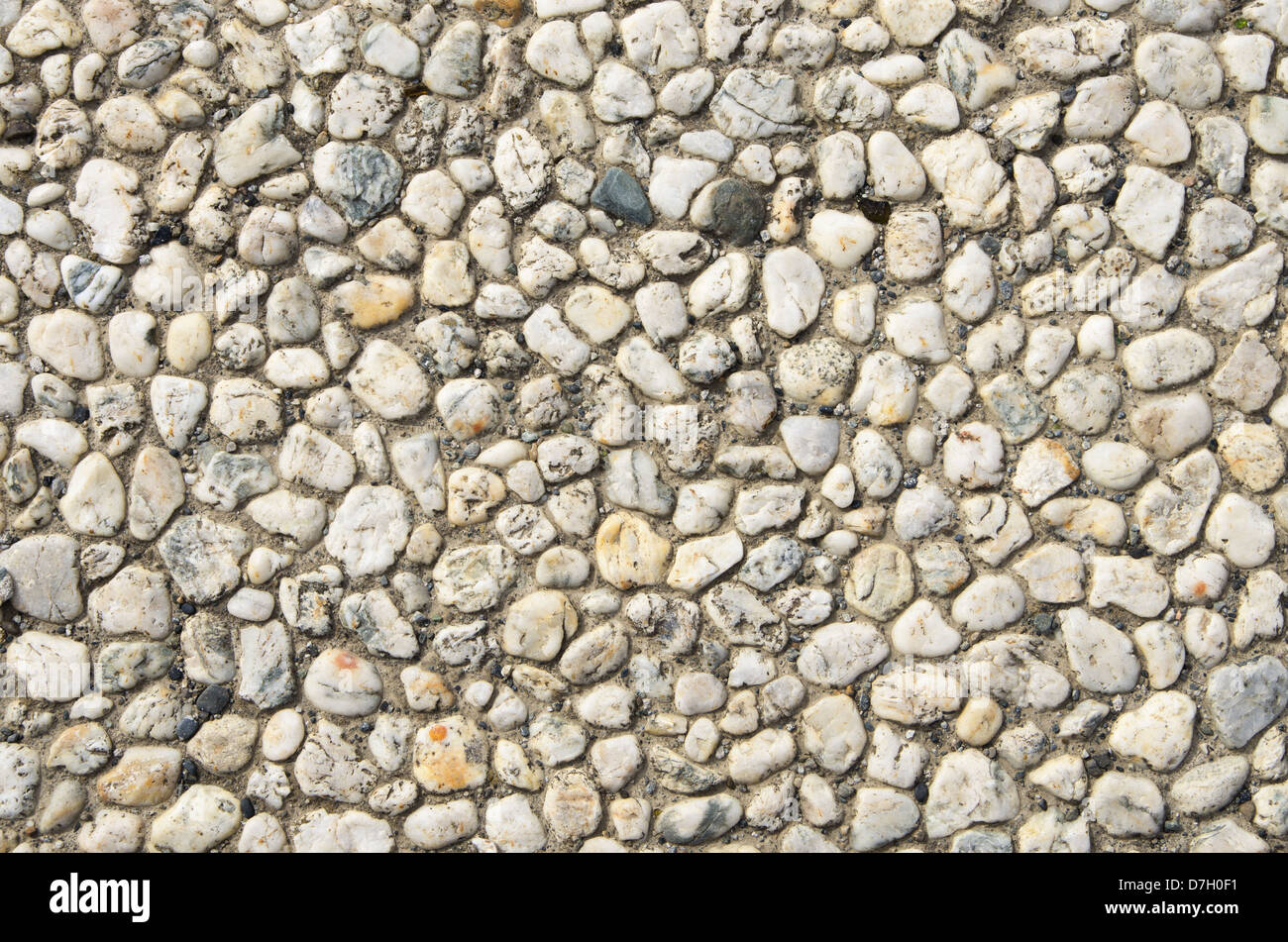 white rounded quartz pebbles inset in cement background texture - Stock Image