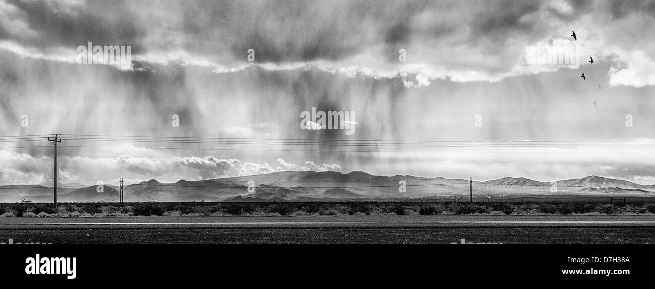 A panoramic monochromatic image of a storm crossing State road 95 near Pahrump Nevada - Stock Image