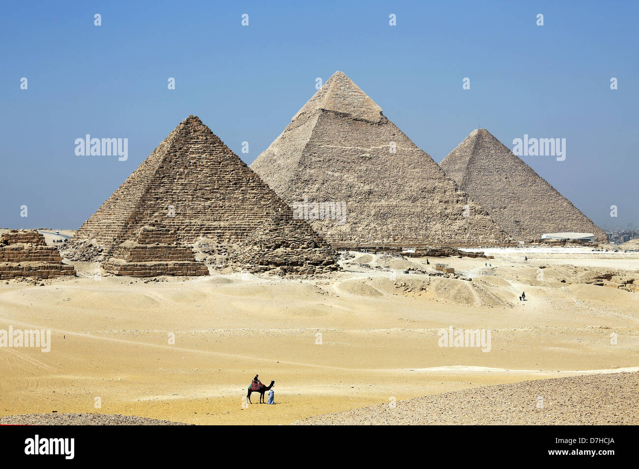 Camel Drivers in front of the Pyramids, Giza, Cairo, Egypt North Africa - Stock Image