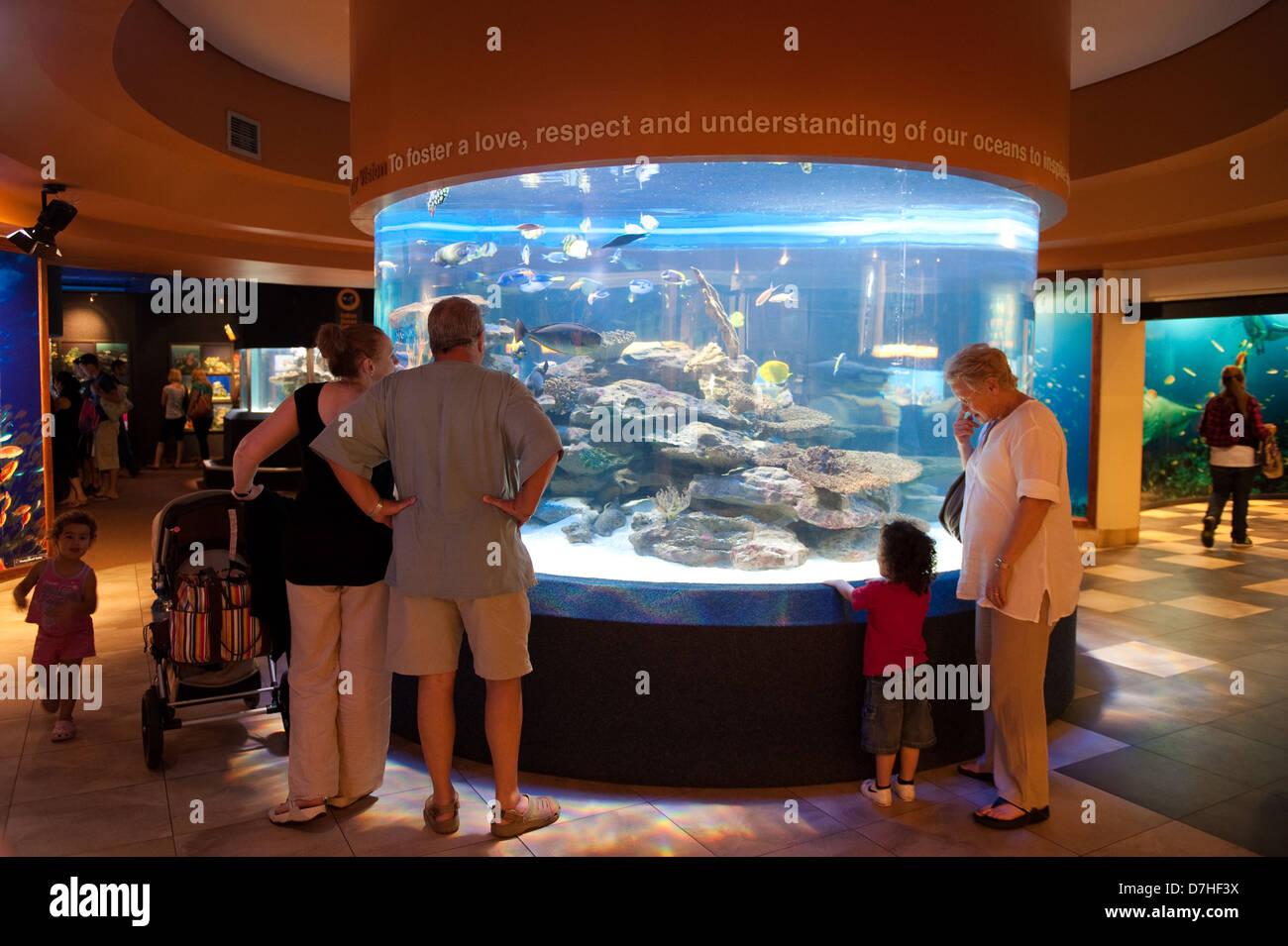 Two Oceans Aquarium, Victoria & Alfred Waterfront, Cape Town, South Africa - Stock Image