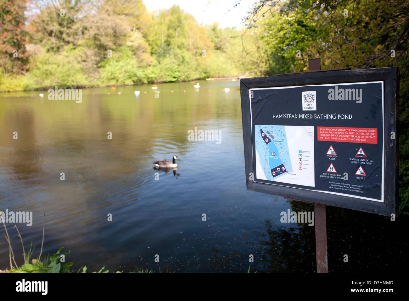 Hampstead Heath Mixed Bathing Pond, London - Stock Image