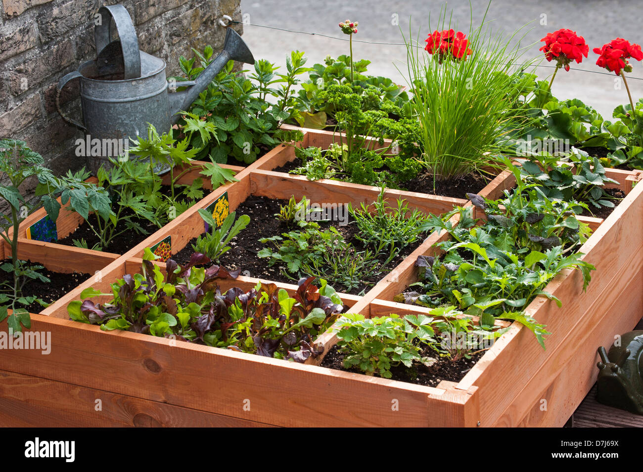 Square foot gardening by planting flowers, herbs and vegetables in wooden box on balcony Stock Photo