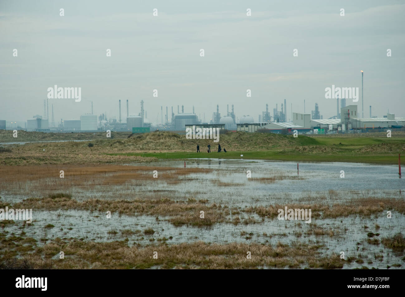 people playing golf amid oil industry and wetlands,puddles,mud,grey skies,extreme conditions - Stock Image