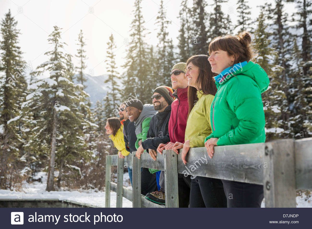 Group of friends standing by fence in mountains - Stock Image
