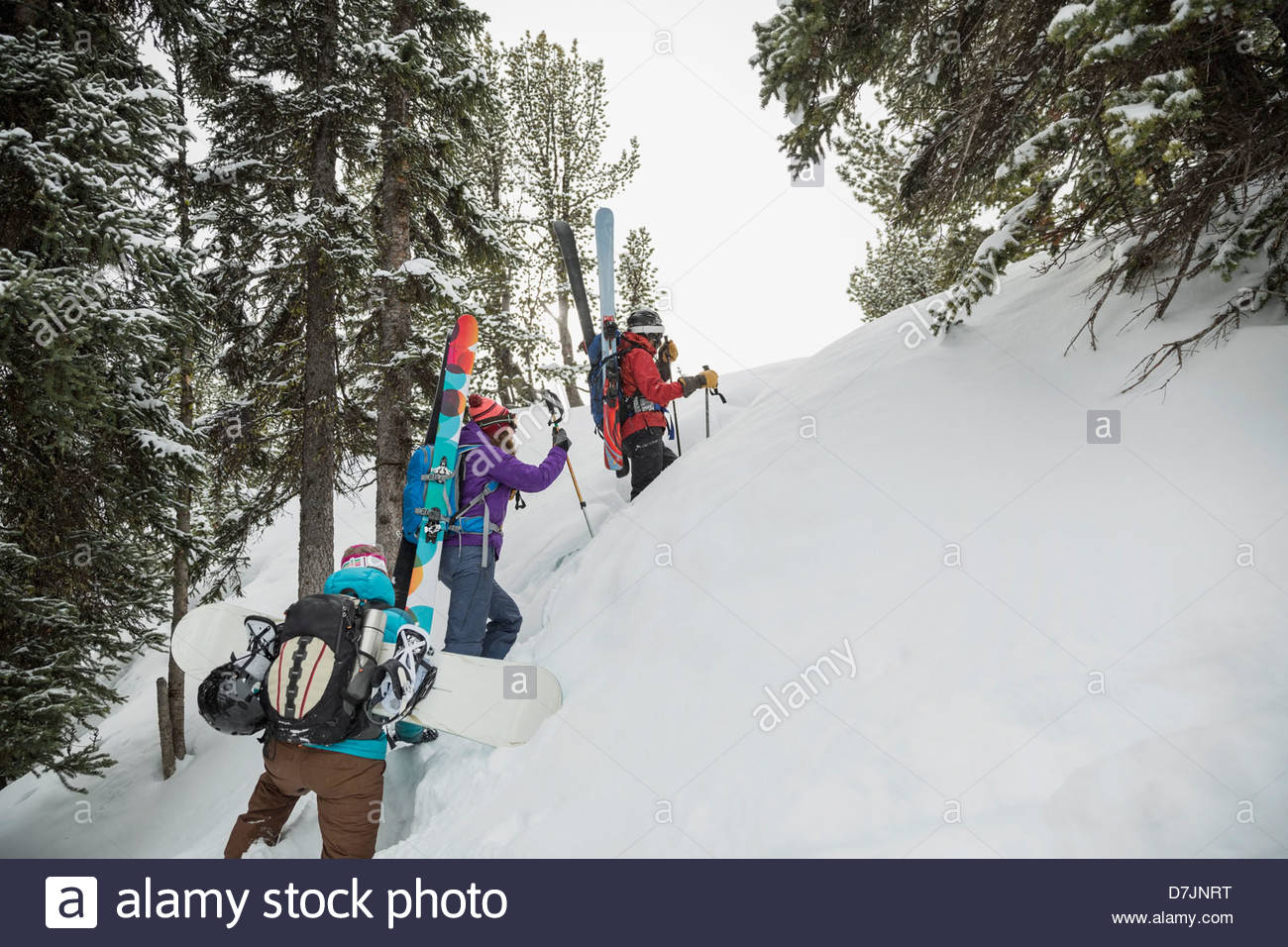 Women backcountry skiers hiking in mountains - Stock Image