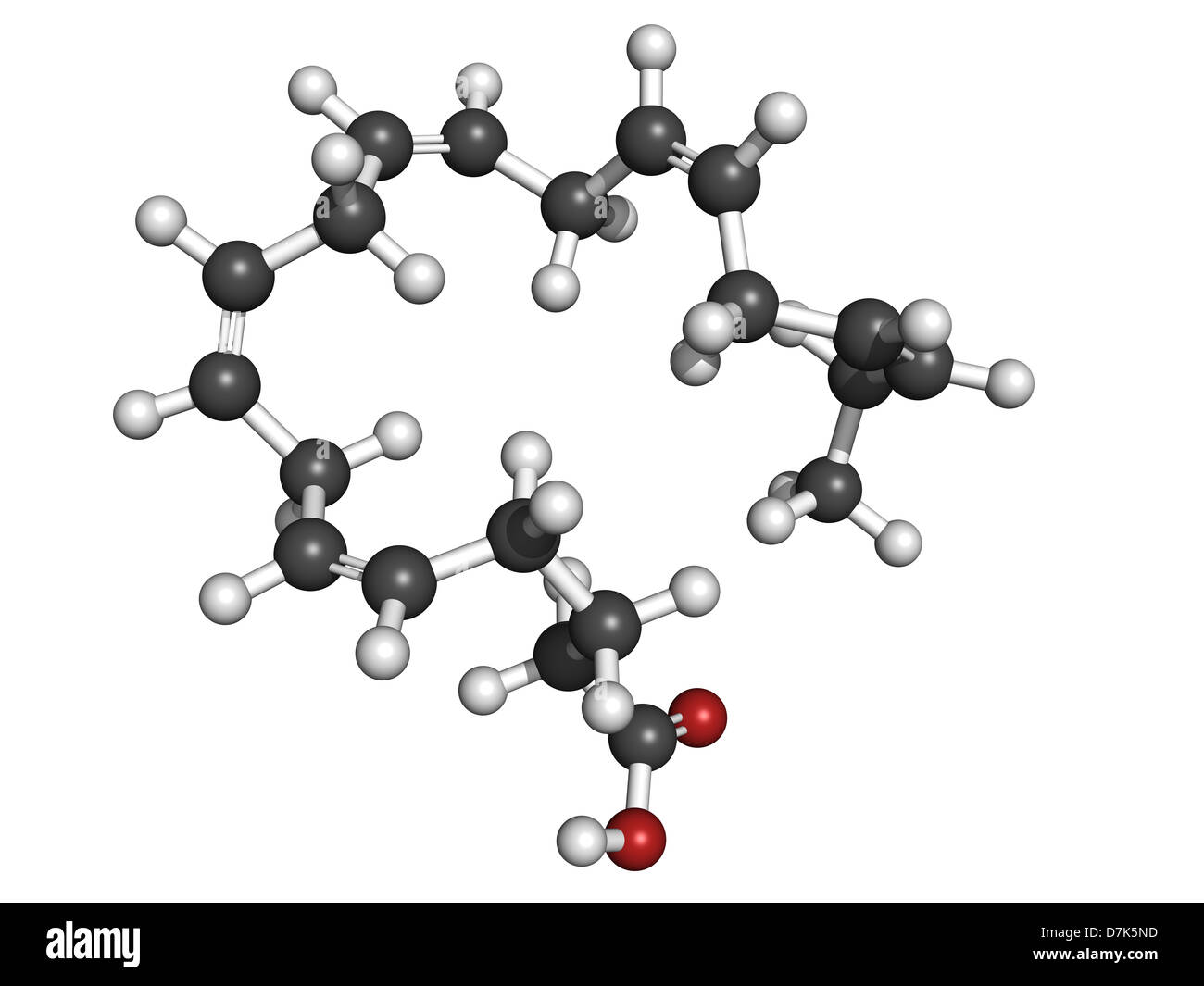 eicosapentaenoic acid epa omega 3 fatty acid molecular model epa stock photo 56355305 alamy. Black Bedroom Furniture Sets. Home Design Ideas