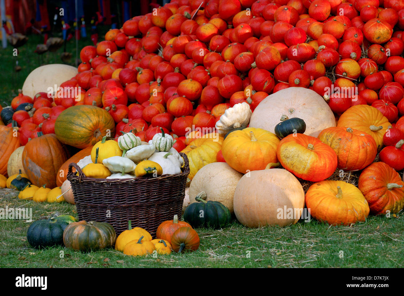 Autumn still life, fruit, vegetables, pumpkins, straw bales - Stock Image
