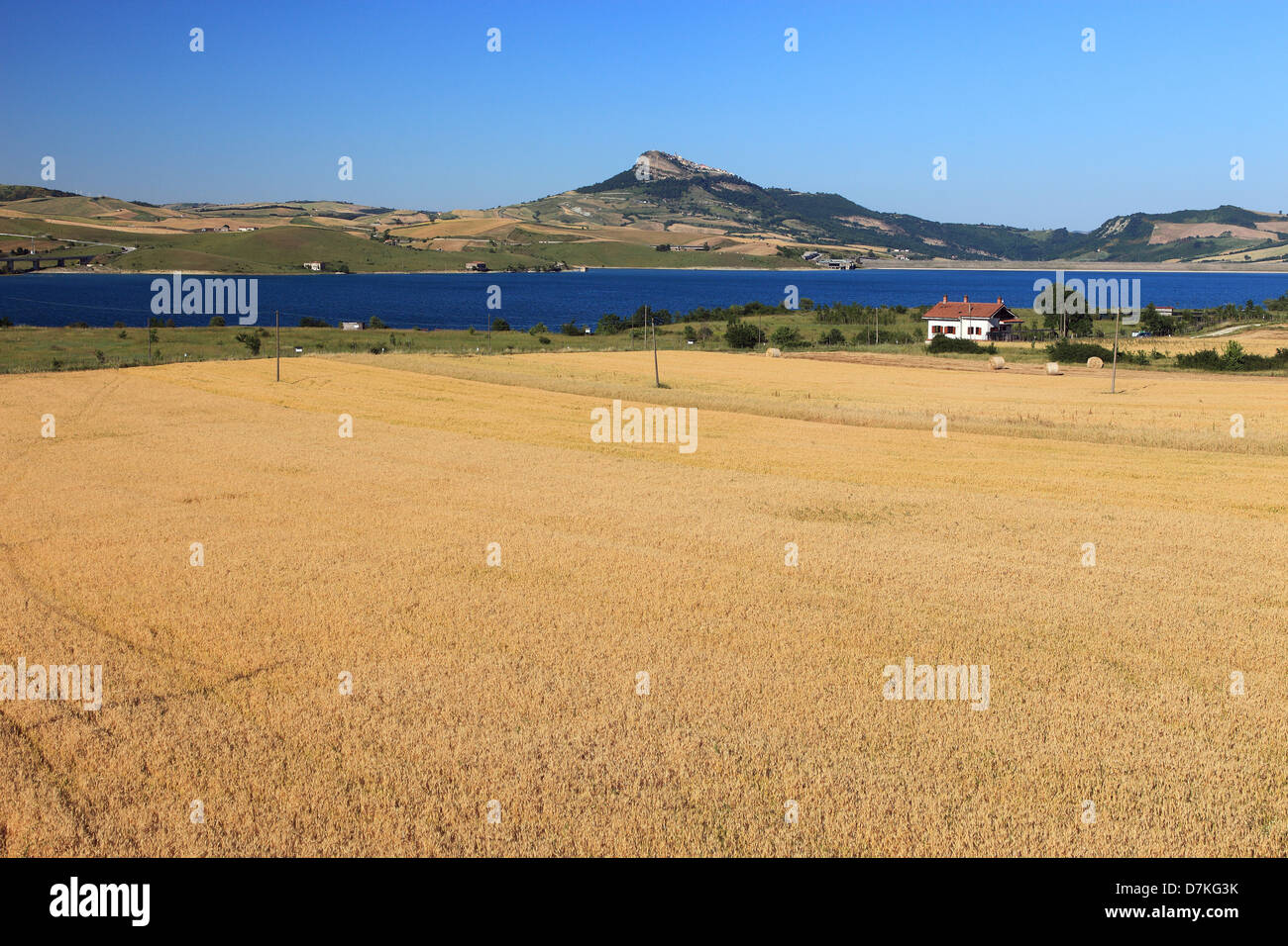 Italy Campania wheat field lake Conza view towards Cairano - Stock Image