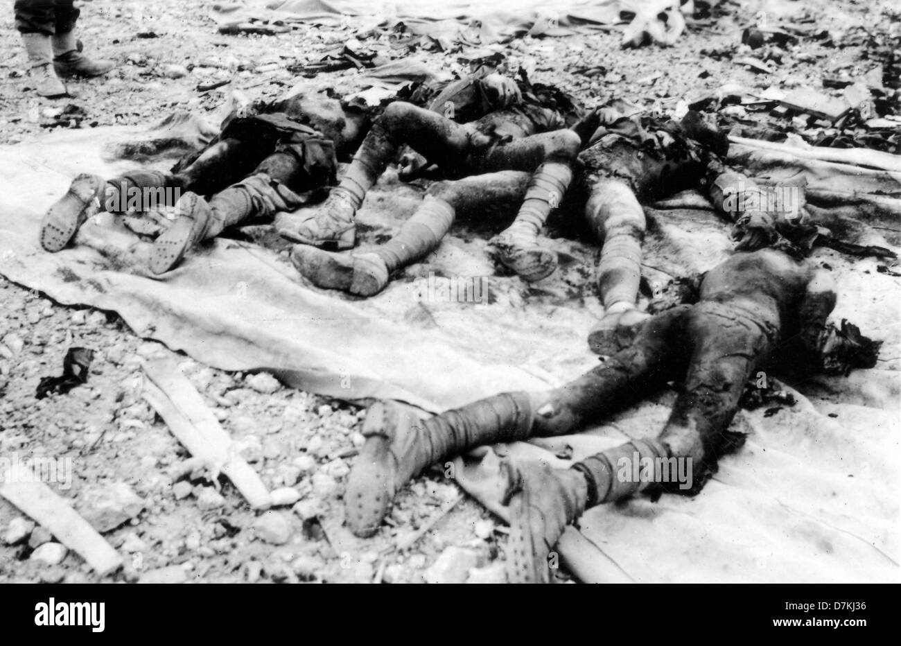 World war 2 stock photos world war 2 stock images alamy charred remains of dead german soldiers killed in world war 2 in egypt stock image altavistaventures Images