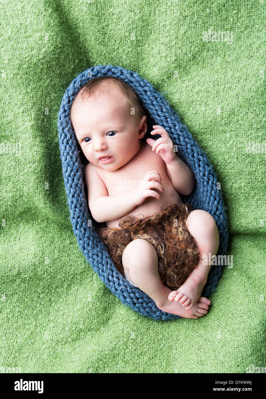 baby cocoon 2 - Stock Image