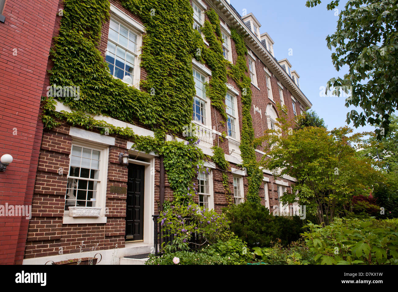 Front of brick home covered in ivy - Stock Image