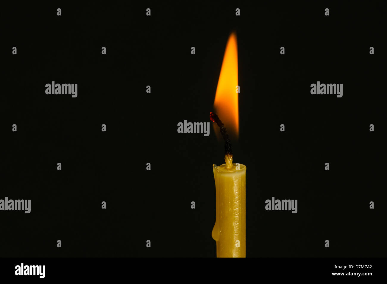 A closeup view of burning beeswax candle - Stock Image