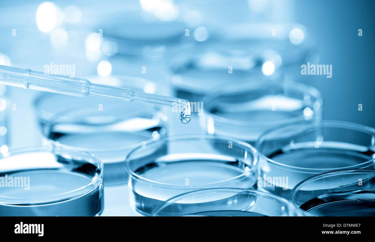 Biological research - Stock Image