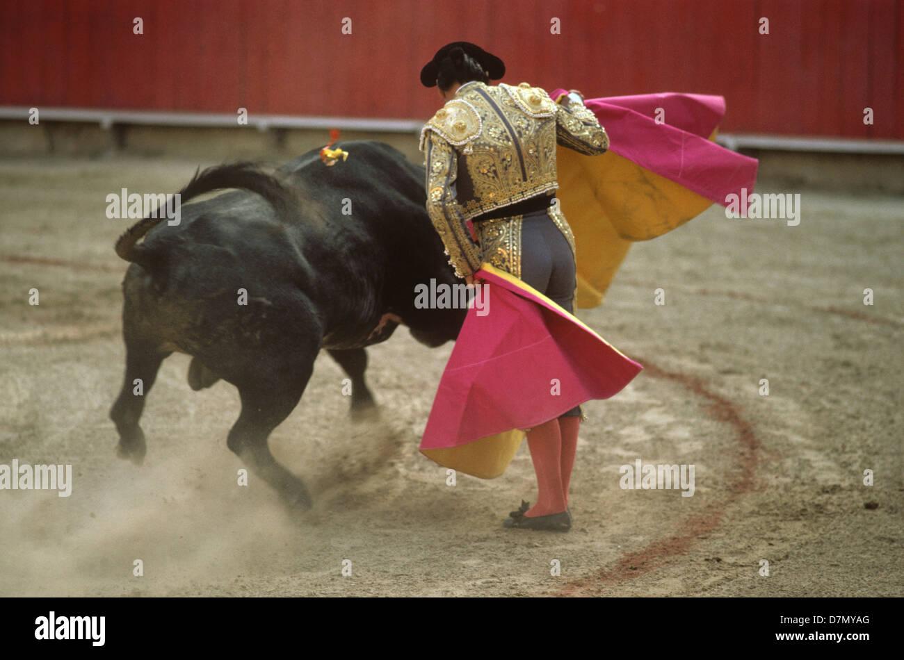 Bull fight, Cartagana, Colombia - Stock Image