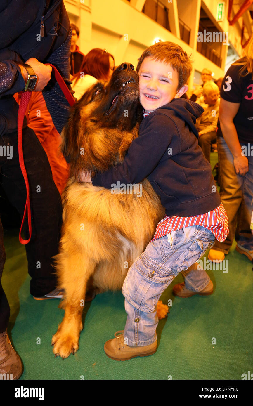 London, UK. 11th May 2013. Simba the Leonberger dog, winner of Top Dog Model, becoming best friends with Charlie Stock Photo