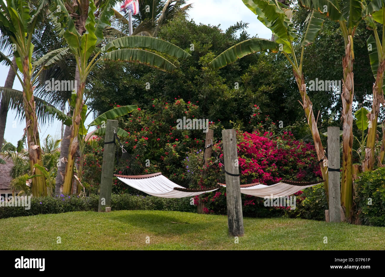 Hammocks under the palms in Provodenciales, Turks and Caicos - Stock Image