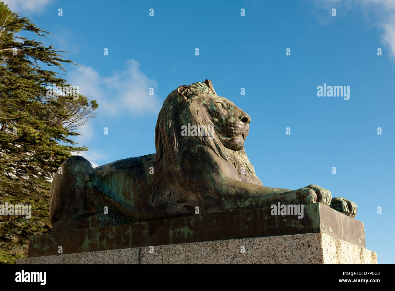 lion statue at Rhodes memorial, Cape Town, South Africa - Stock Image