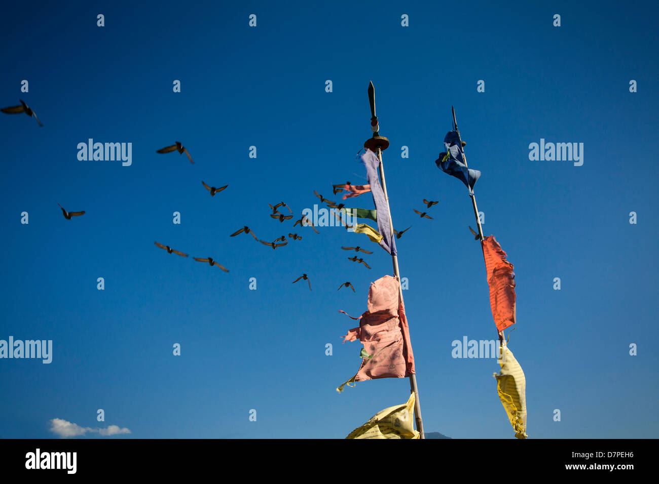 Prayer flags dot the landscape in Bhutan. - Stock Image