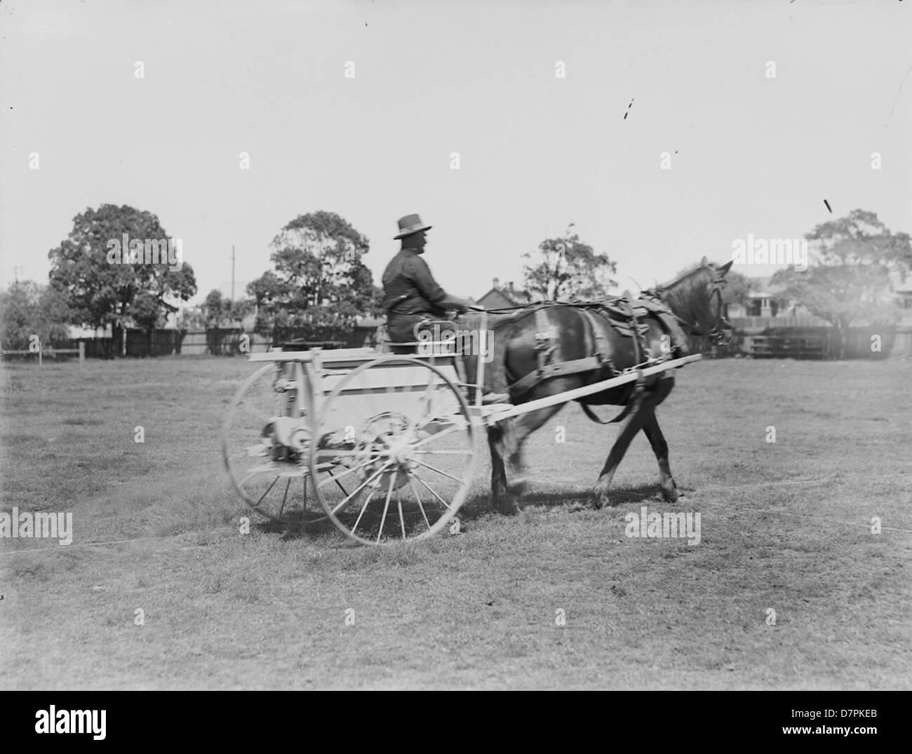 Horsedrawn ground driven fertiliser spreader with driver - Stock Image