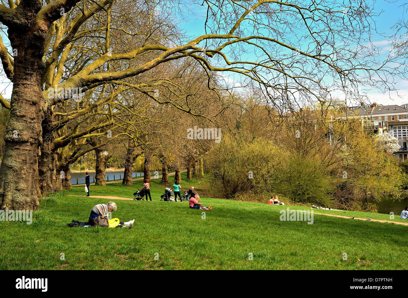 Hampstead Heath on a sunny spring day - Stock Image