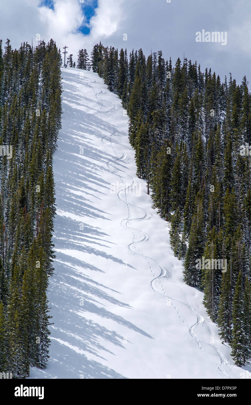 Monarch Mountain lifts closed for the season, but one hiker and his dog left tracks in the fresh May snow on Gunbarrel - Stock Image