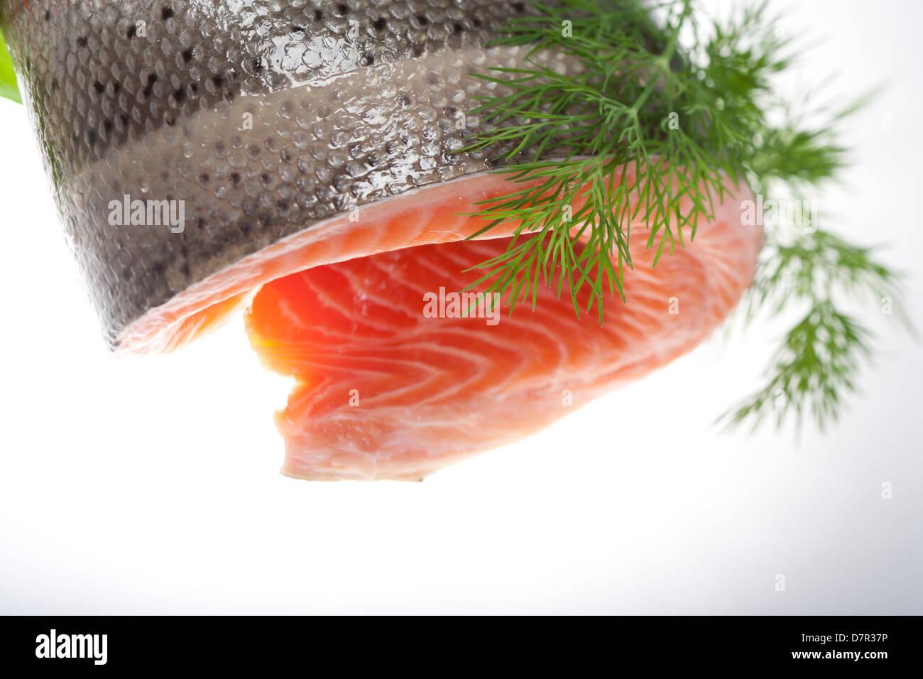 Salmon Eye Stock Photos & Salmon Eye Stock Images - Page 3 - Alamy
